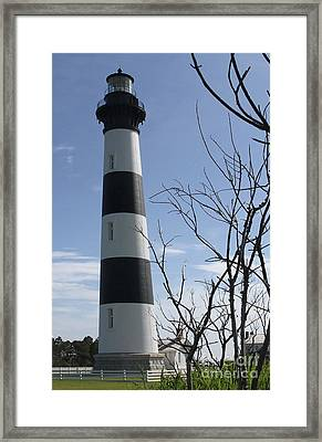 Bodie Light Uncaged 2 Framed Print by Cathy Lindsey