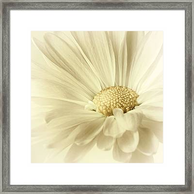 Body And Soul Framed Print