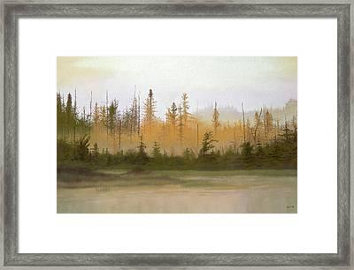 Bog Out Back Framed Print by Bruce Richardson