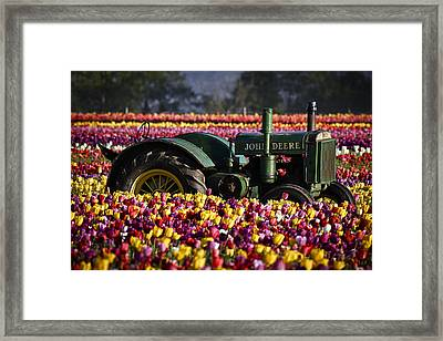 Bogged Down By Color Framed Print by Wes and Dotty Weber