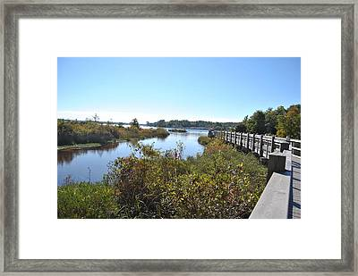 Boggy Bayou Nature Trail Framed Print by Michele Kaiser