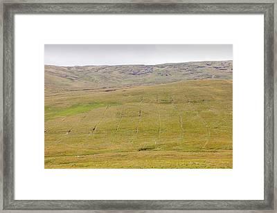 Boggy Moorland Above Wet Sleddale Framed Print by Ashley Cooper