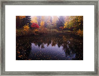 Boise Autumn Framed Print
