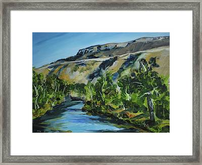 Boise River From Barber Park Bridge Framed Print