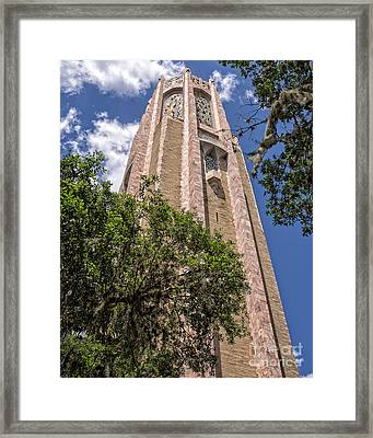 Bok Tower Lake Wales Florida Framed Print by Edward Fielding