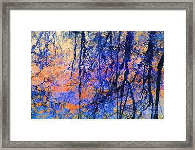 Bold Tree Reflections Framed Print
