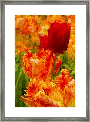 Bold Tulips Framed Print by Paul W Faust -  Impressions of Light
