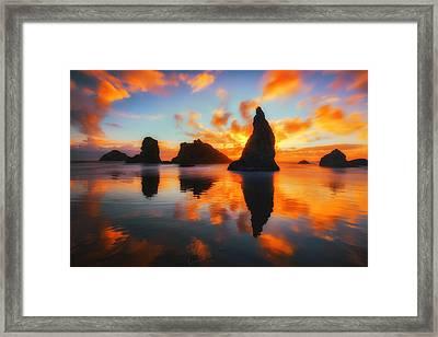 Boldly Bandon Framed Print by Darren  White