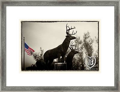 Boldt Castle Deer Framed Print by Tony Cooper