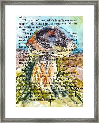 Boletus Edulis Close Up Framed Print by Beverley Harper Tinsley