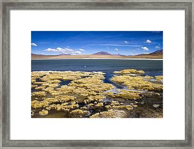 Bolivia Desert Lagoon Framed Print by For Ninety One Days