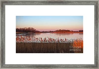 Bombay Hook Sunrise Framed Print