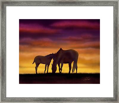 Bonding At Dusk - 2 Framed Print by Chris Fraser