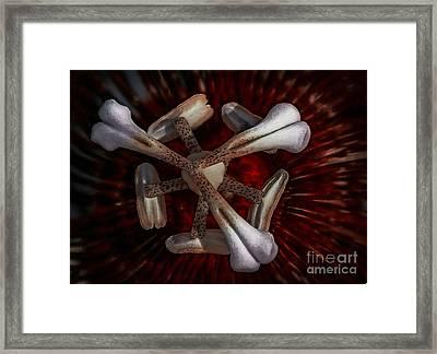 Bone Flower Framed Print