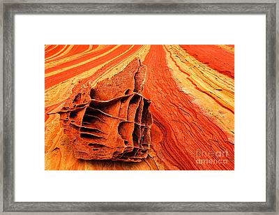 Bone Yard Rocks Framed Print by Inge Johnsson