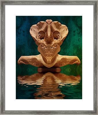 Boneface 7 Framed Print by WB Johnston