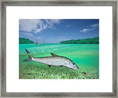Bonefish Flat Framed Print