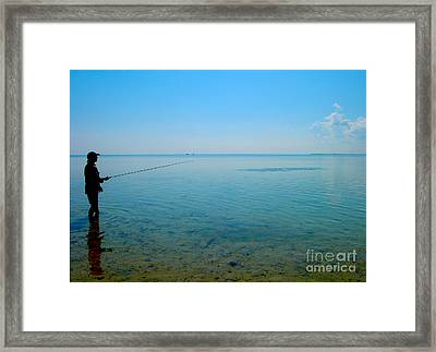 Bonefish Stalk  Framed Print by Carey Chen