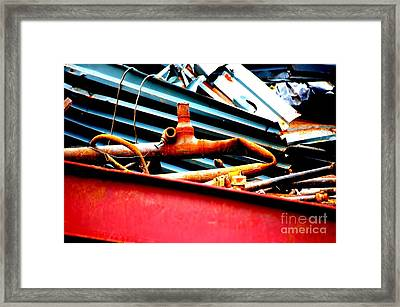 Framed Print featuring the photograph Bones by Christiane Hellner-OBrien