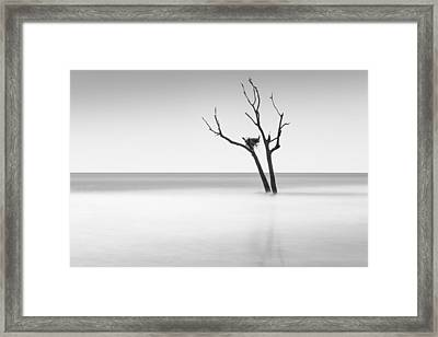 Boneyard Beach - II Framed Print