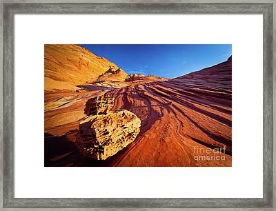 Boneyard Swirl Framed Print by Inge Johnsson