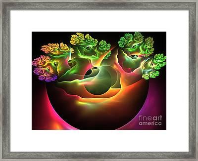 Bonsai Framed Print by Kim Sy Ok