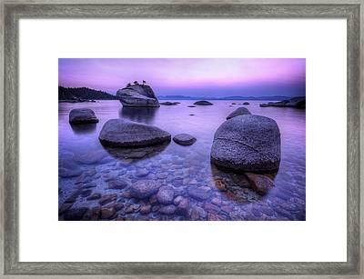 Bonsai Rock Framed Print by Sean Foster