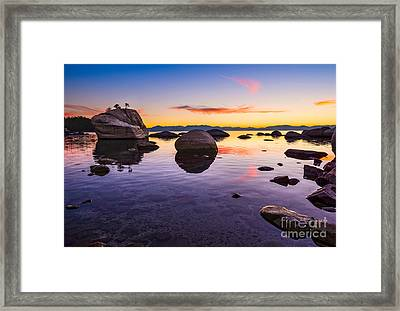 Bonsai Sunset Framed Print by Jamie Pham