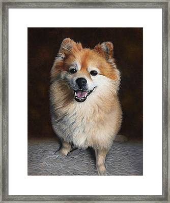 Boo 2 Framed Print by Dee Dee  Whittle