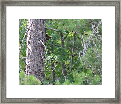 BOO Framed Print by Rhonda Humphreys