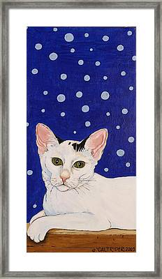 Framed Print featuring the painting Booboo by Alison Caltrider