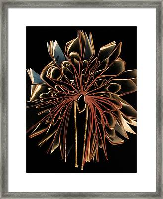 Book Flower Framed Print by Nicklas Gustafsson