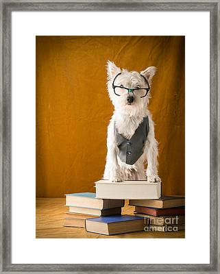 Bookish Dog Framed Print