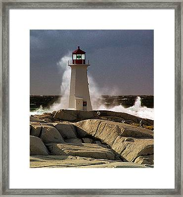 Boomer Framed Print by George Cousins