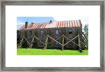 Boone Hall Bracing Framed Print by Randall Weidner