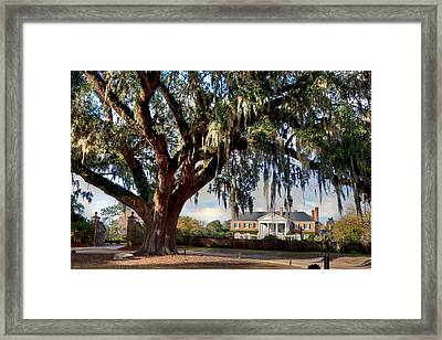 Boone Hall Mansion Framed Print
