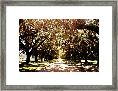 Boone Plantation Framed Print