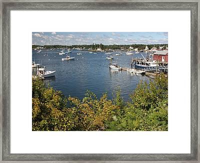 Boothbay Harbor Vista Framed Print