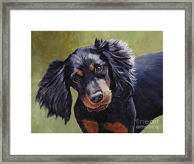 Boozer The Gordon Setter Framed Print by Charlotte Yealey