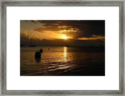 Boqueron 4979 Framed Print by Ricardo J Ruiz de Porras