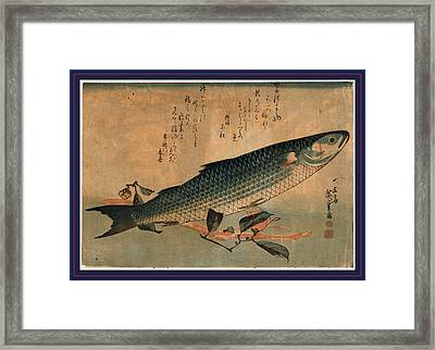 Bora Zu, Striped Mullet Bora. Between 1833 And 1836 Framed Print by Utagawa Hiroshige Also And? Hiroshige (1797-1858), Japanese