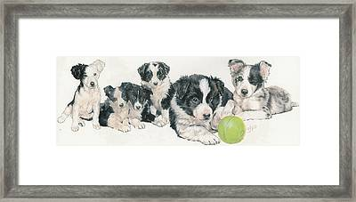 Border Collie Puppies Framed Print by Barbara Keith