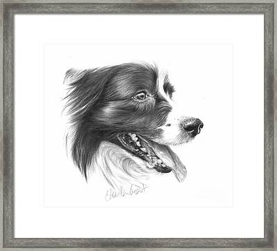 Border Grin Framed Print by Sheona Hamilton-Grant
