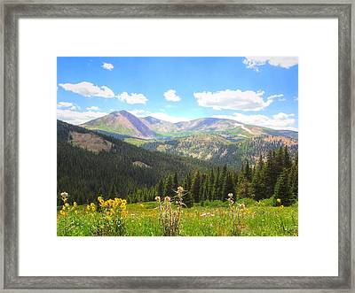 Framed Print featuring the photograph Boreas Pass Summer by Lanita Williams