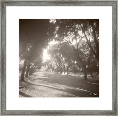 Borghese Gardens Path Framed Print by Beverly Brown