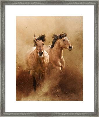 Born From Dust Framed Print by Ron  McGinnis