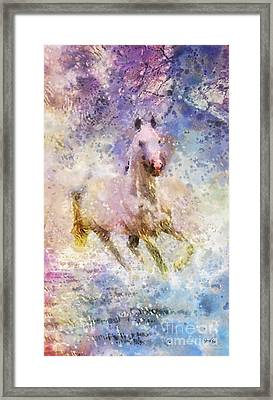 Born To Be Wild Framed Print by Mo T