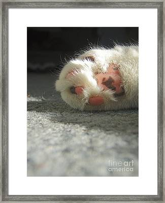 Born To Love Framed Print by Kristine Nora
