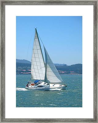 Framed Print featuring the photograph Born To Sail by Connie Fox