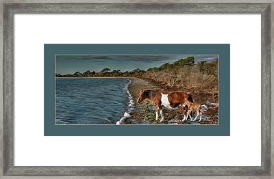 Born Wild Framed Print by Tammy Thompson